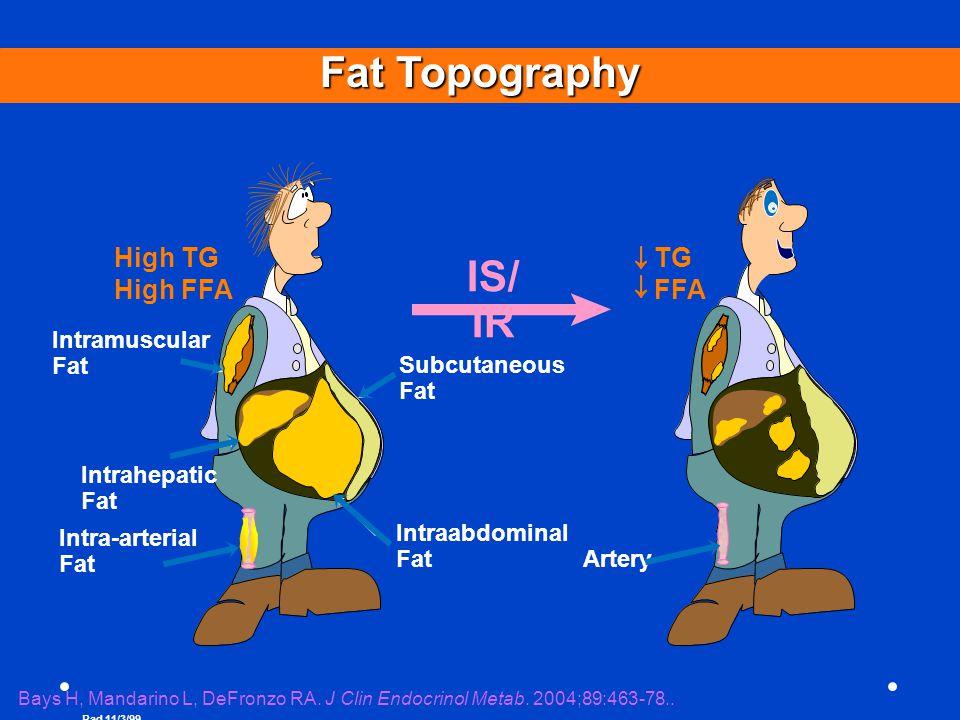 Fat Topography IS/ IR High TG High FFA TG FFA Intramuscular Fat