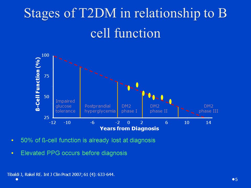 Stages of T2DM in relationship to B cell function