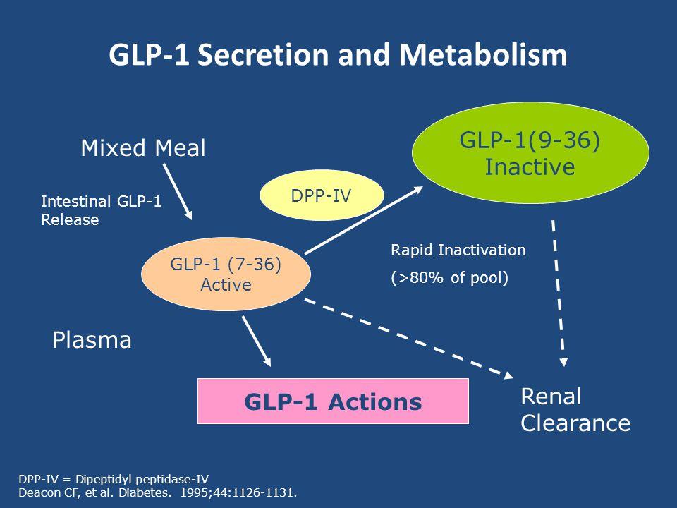 GLP-1 Secretion and Metabolism