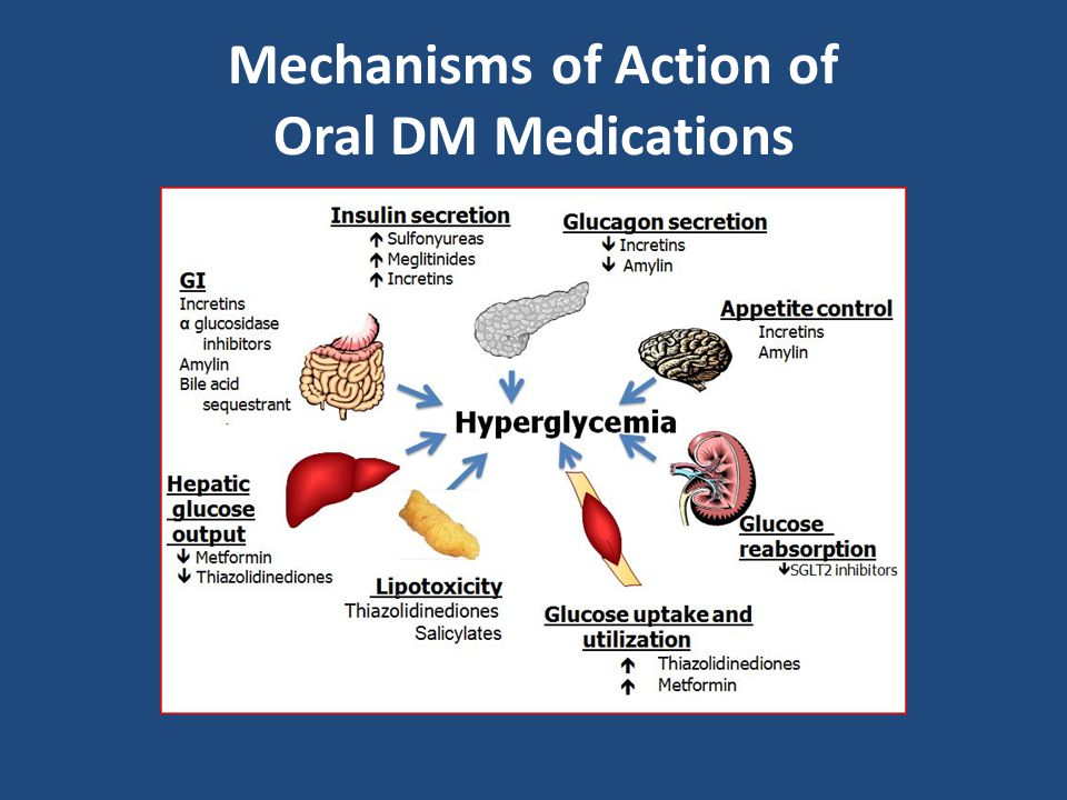 Mechanisms of Action of Oral DM Medications