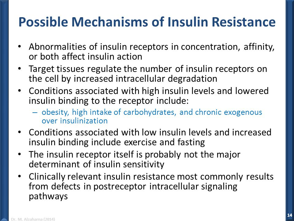 Possible Mechanisms of Insulin Resistance