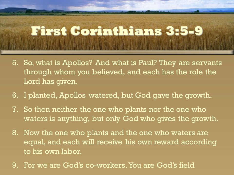 First Corinthians 3:5-9 So, what is Apollos And what is Paul They are servants through whom you believed, and each has the role the Lord has given.