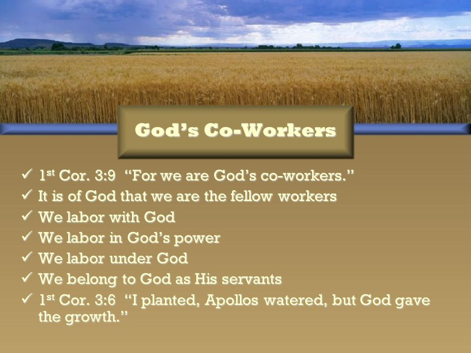 God's Co-Workers 1st Cor. 3:9 For we are God's co-workers.