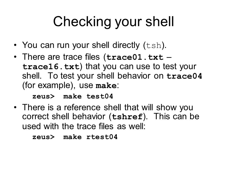 Checking your shell You can run your shell directly (tsh).