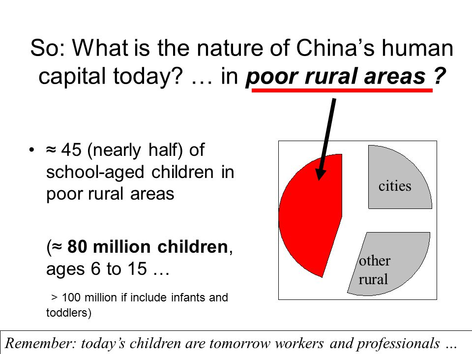 So: What is the nature of China's human capital today