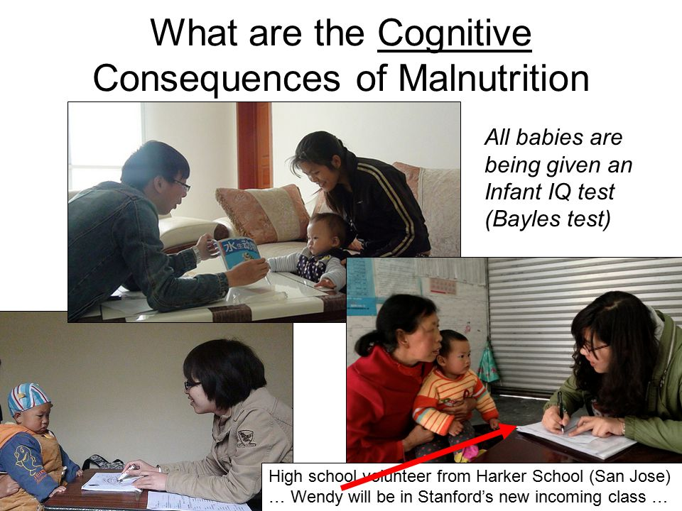 What are the Cognitive Consequences of Malnutrition