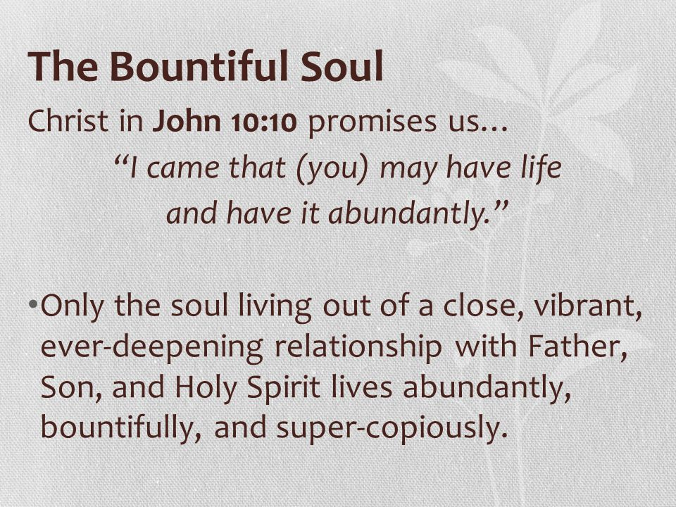 The Bountiful Soul Christ in John 10:10 promises us…