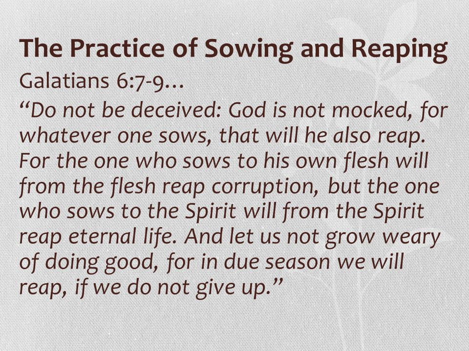 The Practice of Sowing and Reaping
