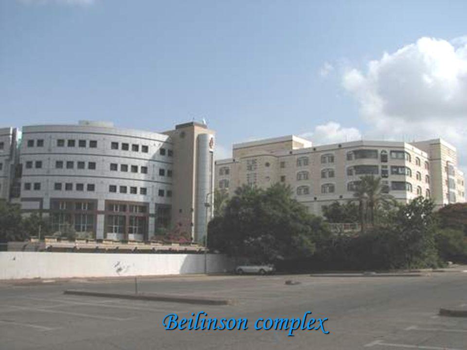 Beilinson complex