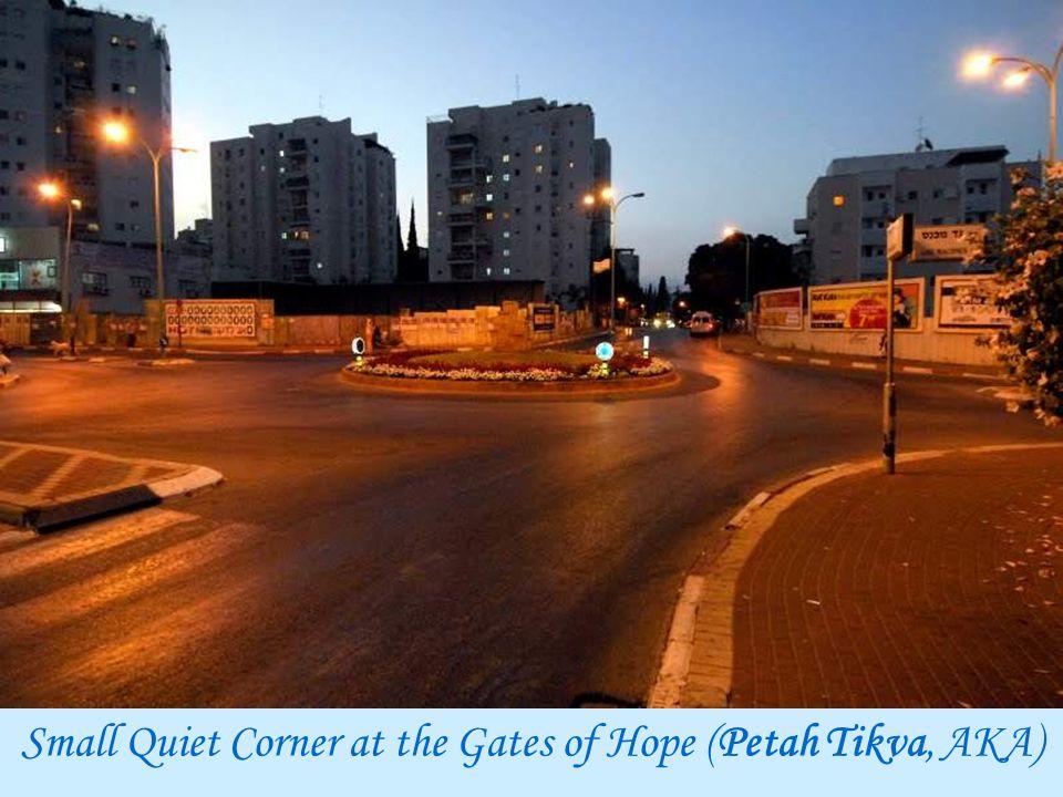 Small Quiet Corner at the Gates of Hope (Petah Tikva, AKA)