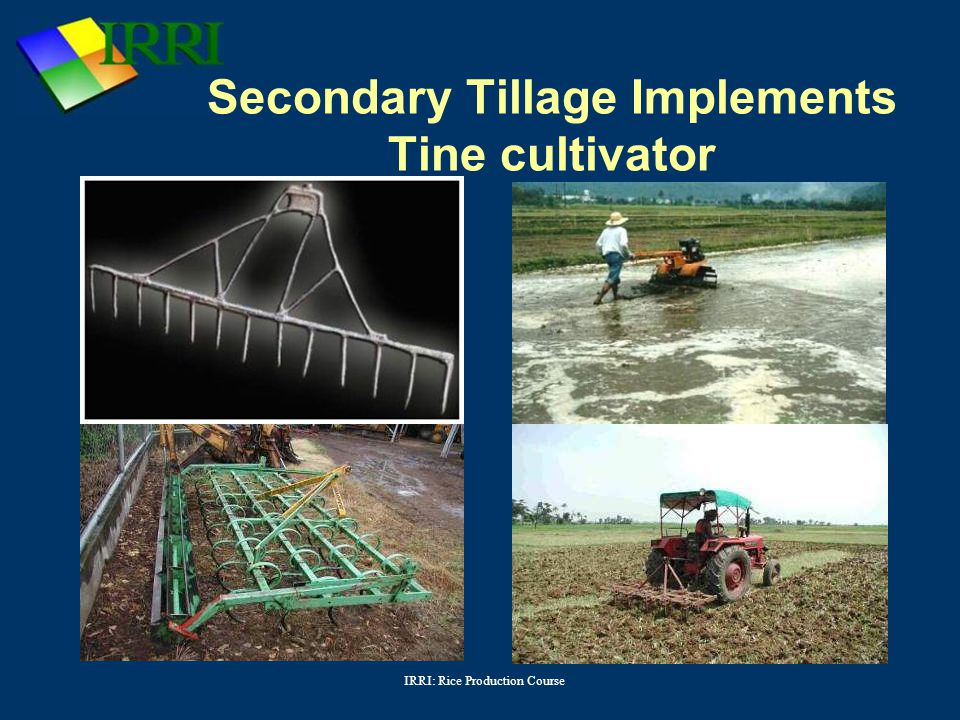 Secondary Tillage Implements Tine cultivator