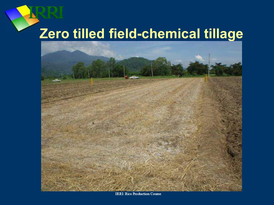 Zero tilled field-chemical tillage
