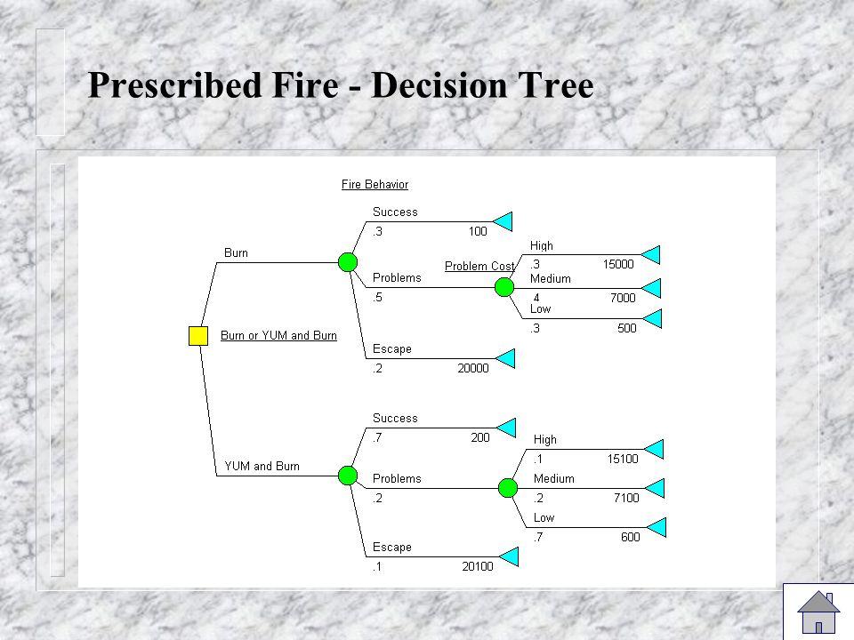 Prescribed Fire - Decision Tree