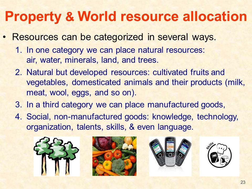 Property & World resource allocation
