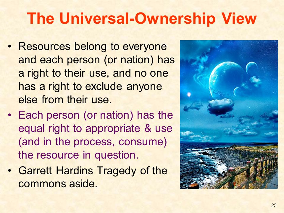 The Universal-Ownership View