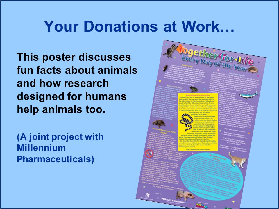 Your Donations at Work…