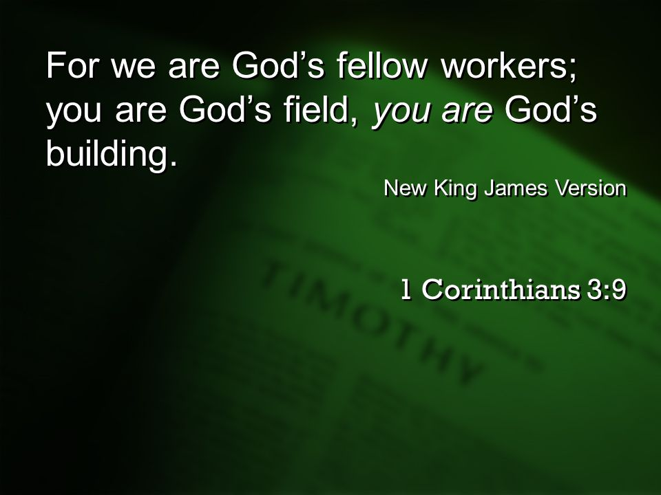 For we are God's fellow workers; you are God's field, you are God's building.