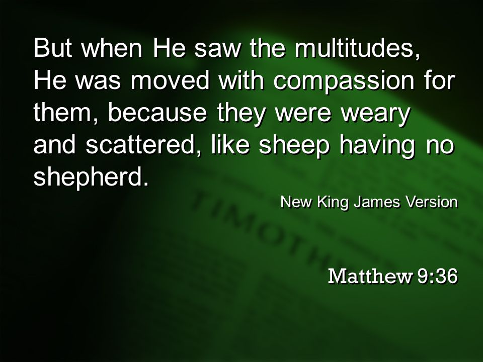 But when He saw the multitudes, He was moved with compassion for them, because they were weary and scattered, like sheep having no shepherd.