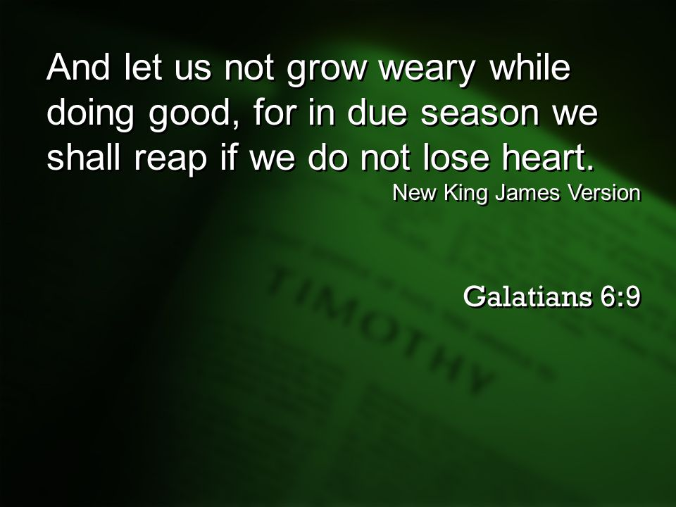 And let us not grow weary while doing good, for in due season we shall reap if we do not lose heart.