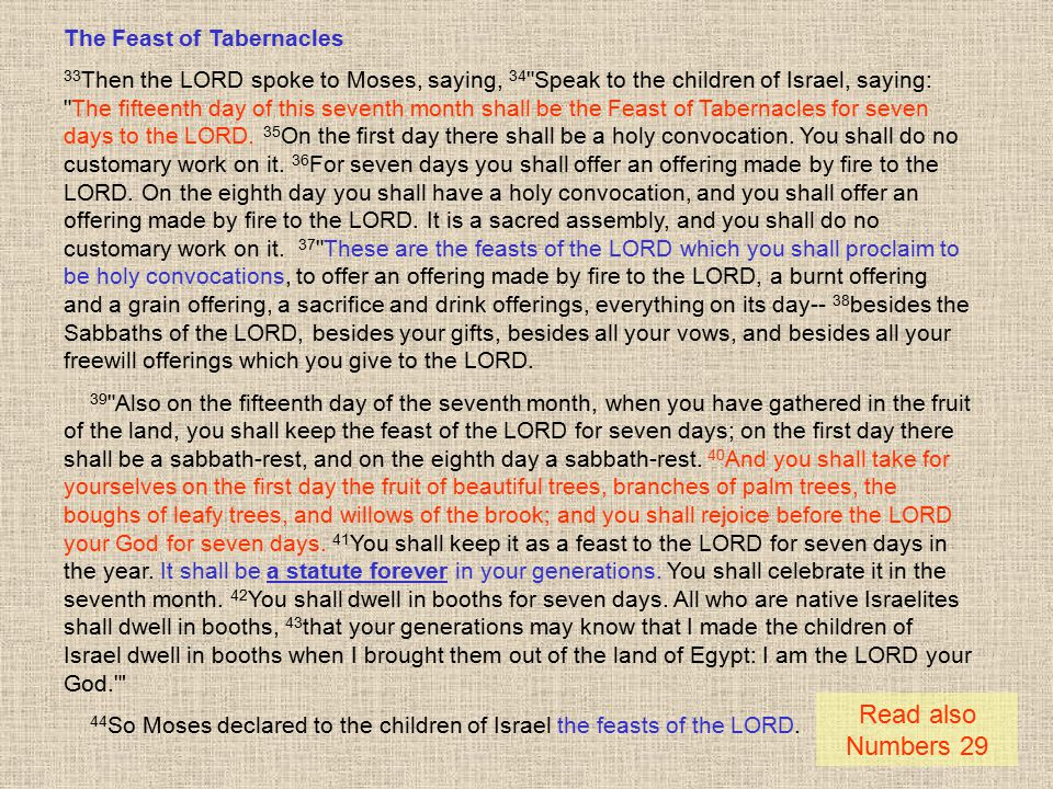Read also Numbers 29 The Feast of Tabernacles