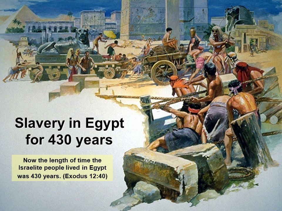 Slavery in Egypt for 430 years