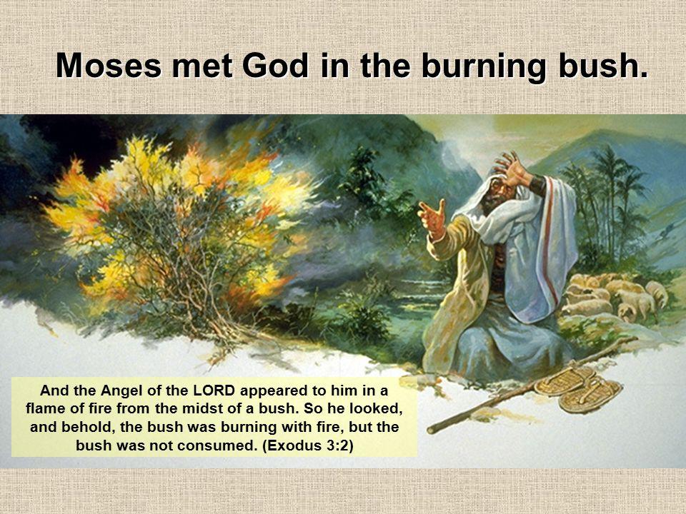 Moses met God in the burning bush.