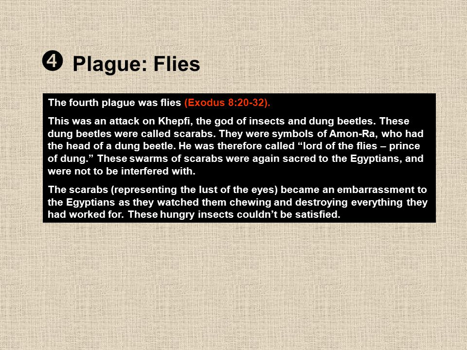  Plague: Flies The fourth plague was flies (Exodus 8:20-32).