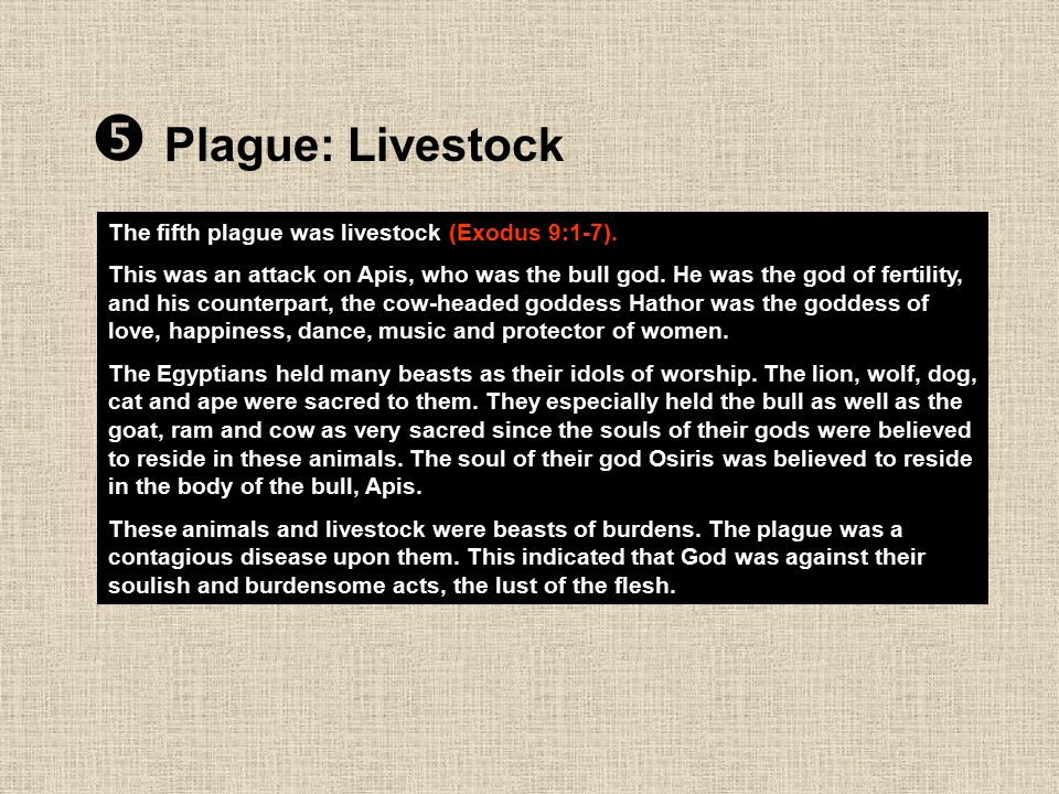  Plague: Livestock The fifth plague was livestock (Exodus 9:1-7).