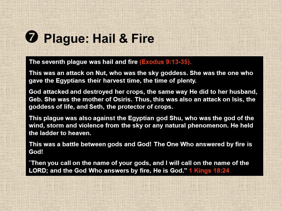  Plague: Hail & Fire The seventh plague was hail and fire (Exodus 9:13-35).