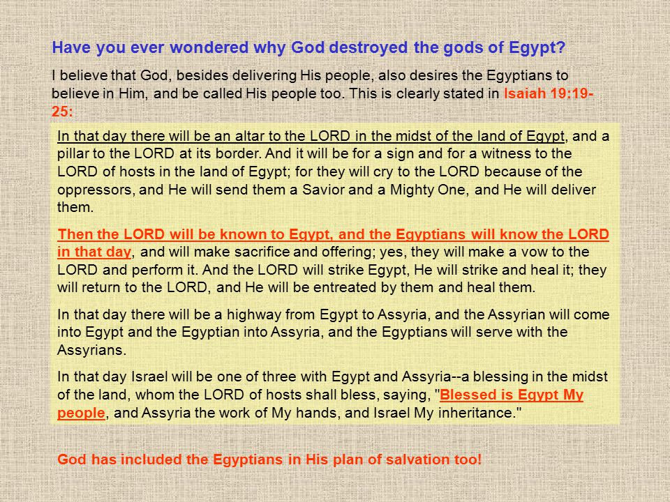 Have you ever wondered why God destroyed the gods of Egypt