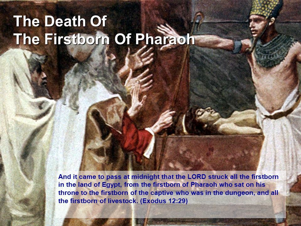 The Death Of The Firstborn Of Pharaoh
