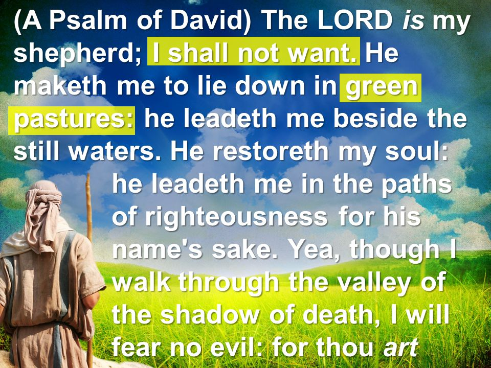 (A Psalm of David) The LORD is my shepherd; I shall not want