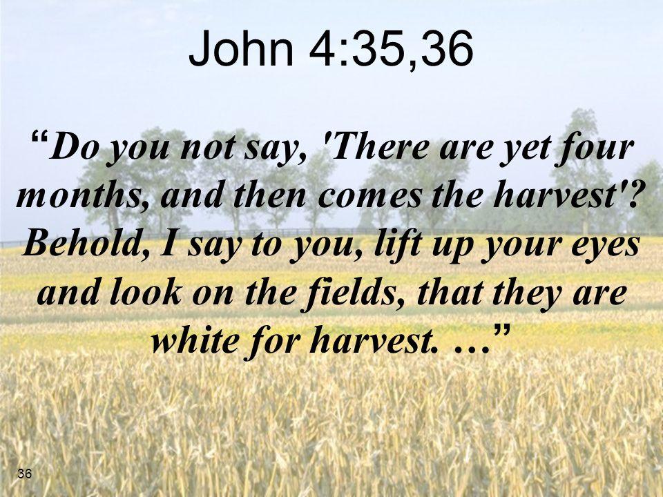 John 4:35,36