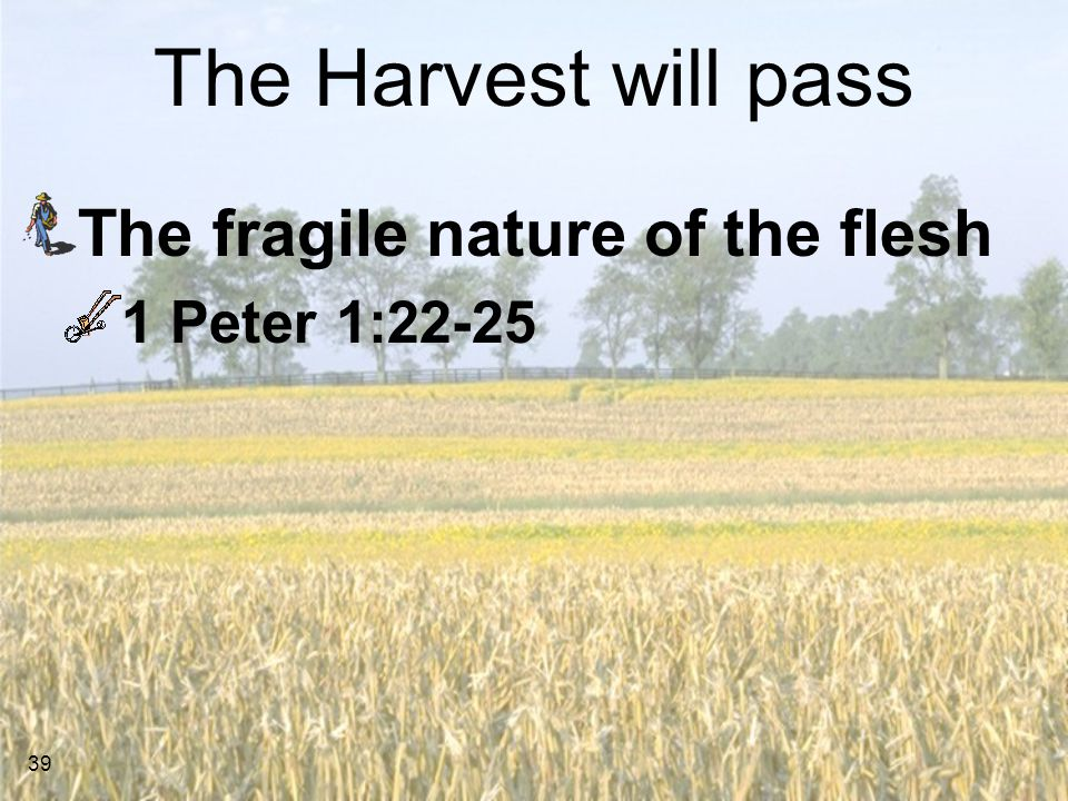 The Harvest will pass The fragile nature of the flesh 1 Peter 1:22-25