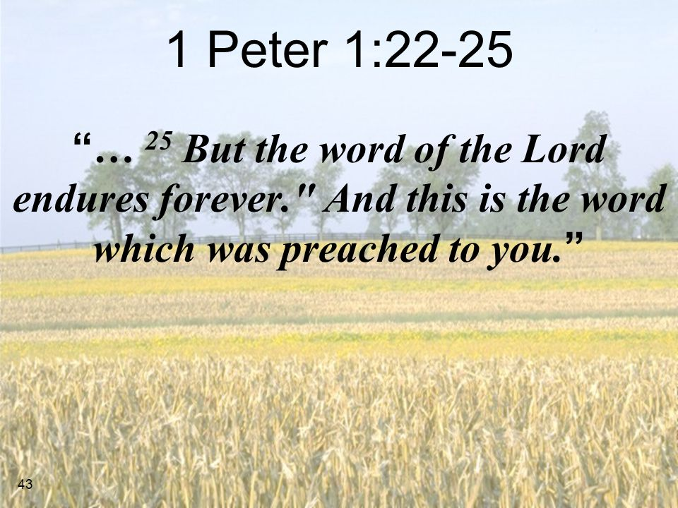 1 Peter 1:22-25 … 25 But the word of the Lord endures forever. And this is the word which was preached to you.