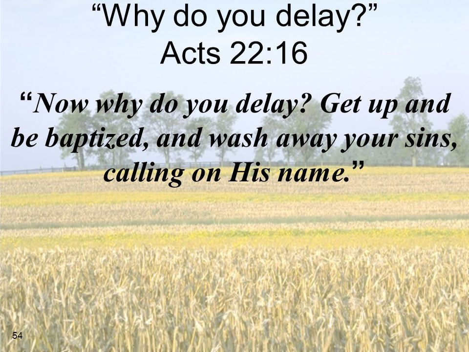 Why do you delay Acts 22:16