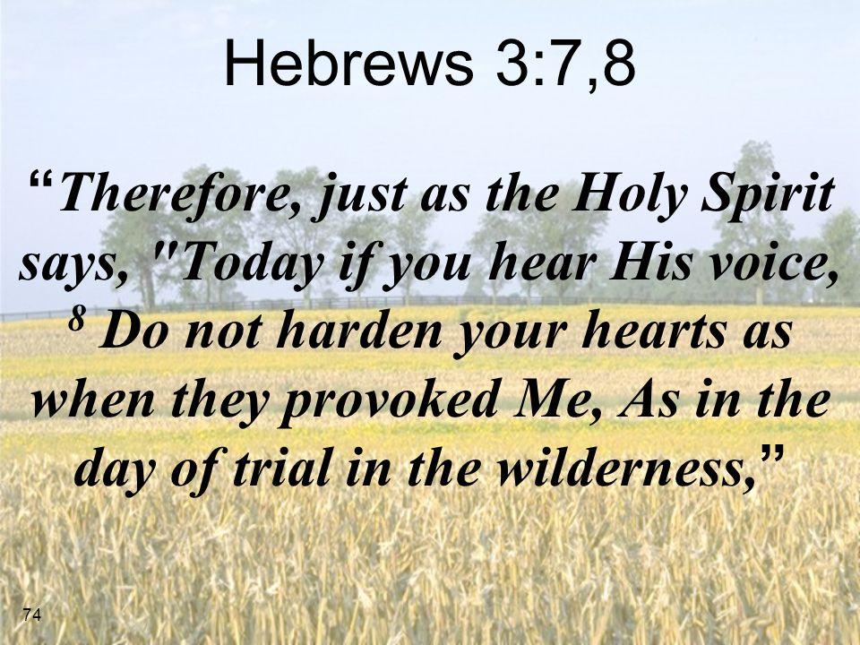Hebrews 3:7,8