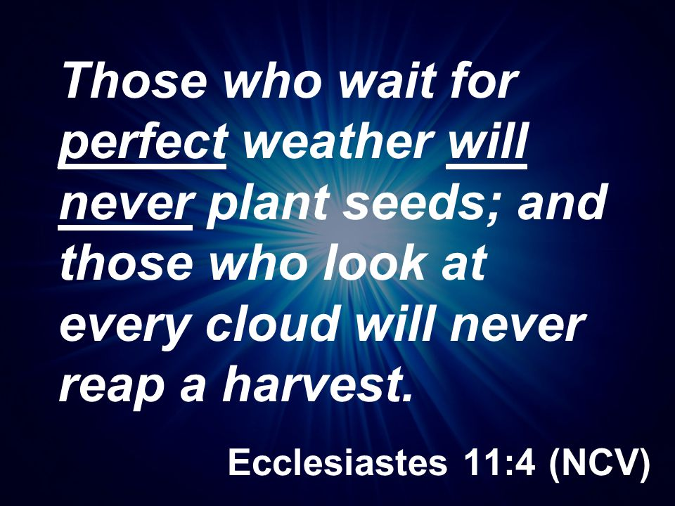 Those who wait for perfect weather will never plant seeds; and those who look at every cloud will never reap a harvest.