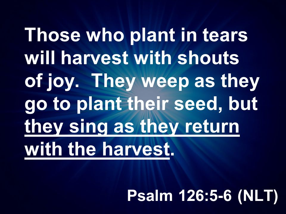 Those who plant in tears will harvest with shouts of joy