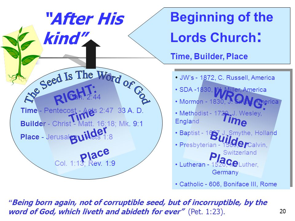 The Seed Is The Word of God