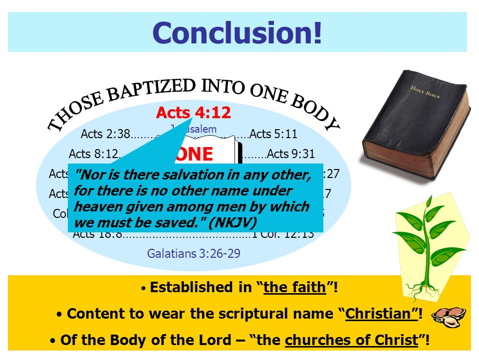 Conclusion! THOSE BAPTIZED INTO ONE BODY ONESEEDLk. 8:11 Acts 4:12