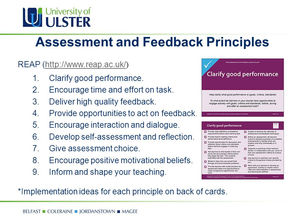 Assessment and Feedback Principles
