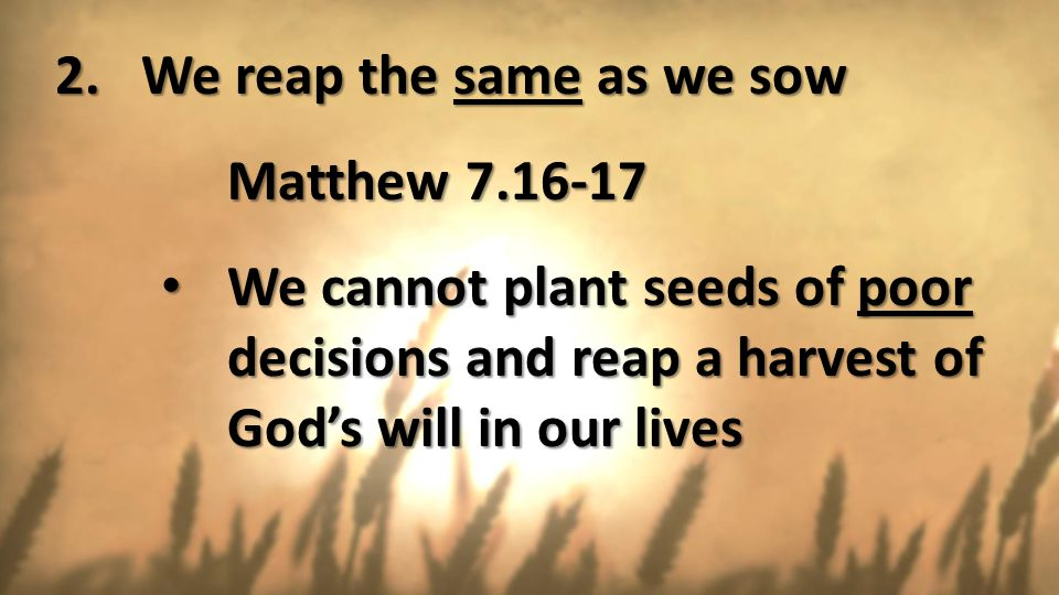 We reap the same as we sow