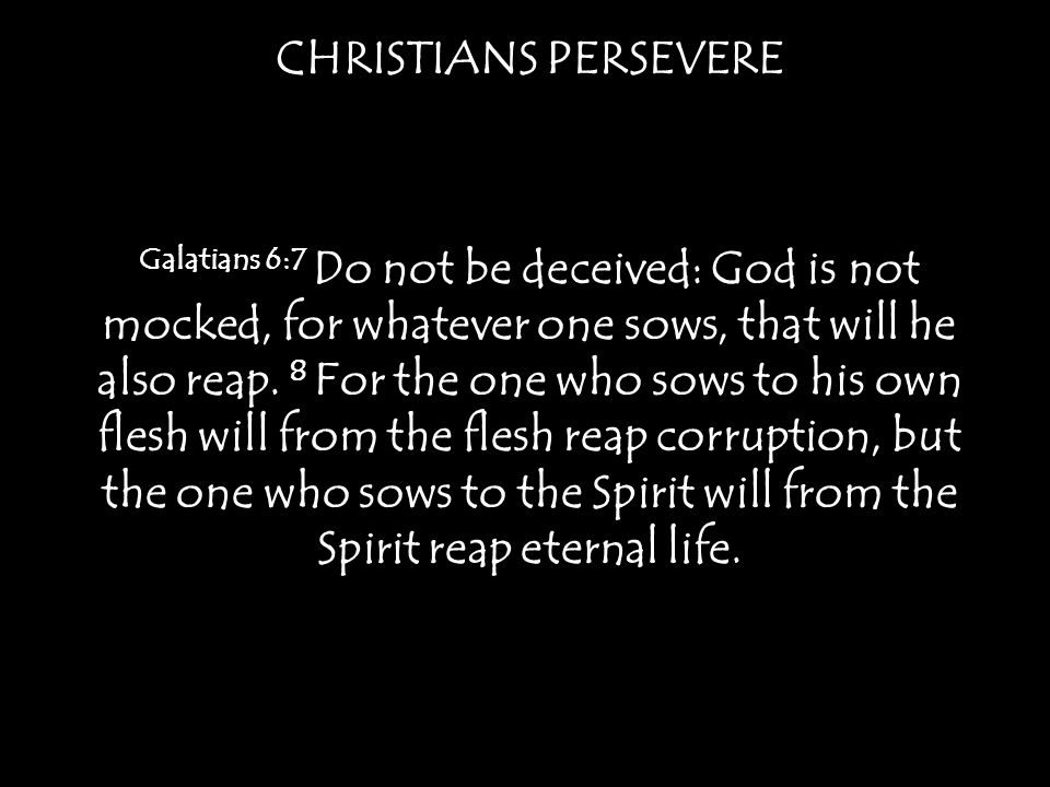 CHRISTIANS PERSEVERE