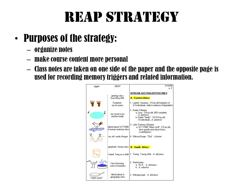 Reap Strategy Purposes of the strategy: organize notes