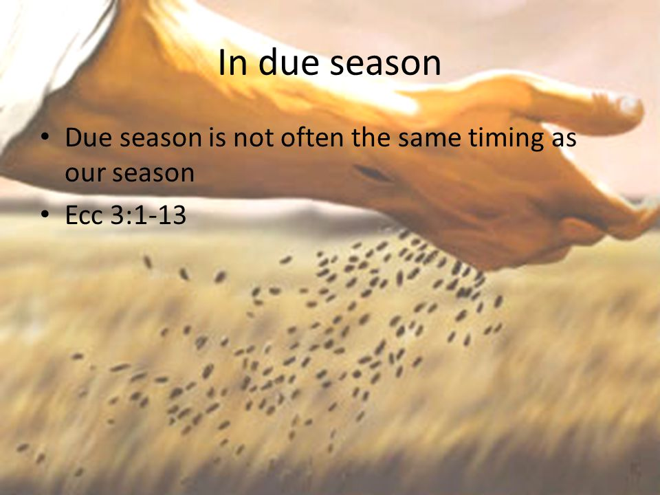 In due season Due season is not often the same timing as our season