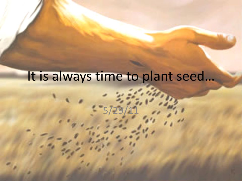 It is always time to plant seed…