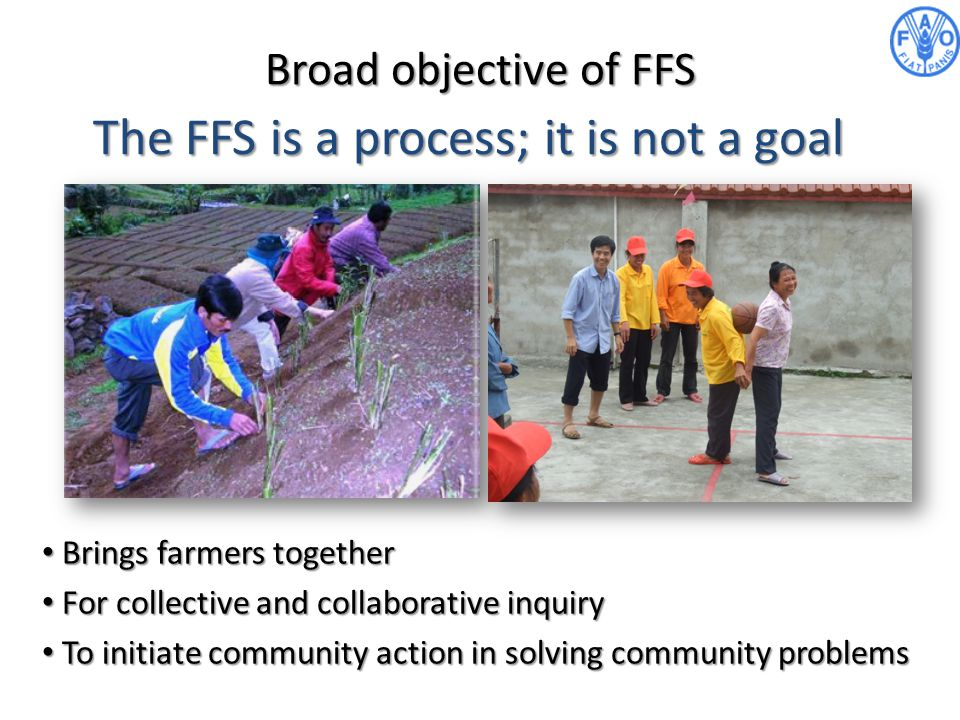 The FFS is a process; it is not a goal