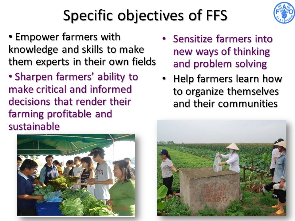 Specific objectives of FFS