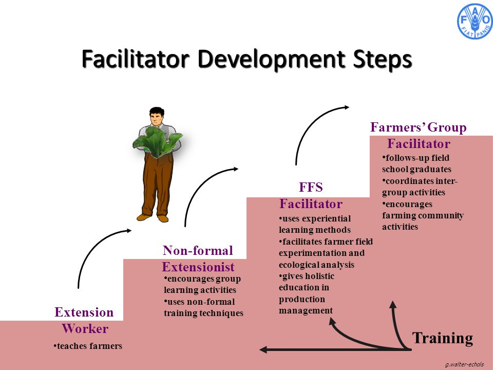 Facilitator Development Steps